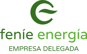 bardelec-empresa-delegada-fenie-energia